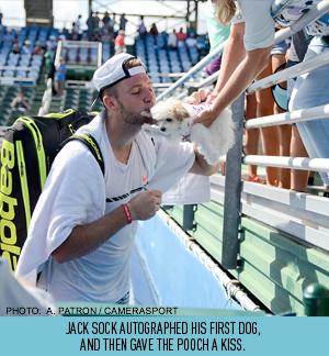 sock-kisses-dog